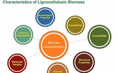 Characterizing Lignocellulosic Biomass Strategies