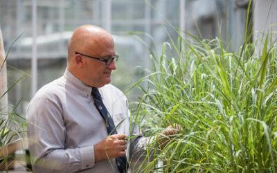 Ragauskas Helps Lead Biofuel-Related Breakthrough, Gains Honors